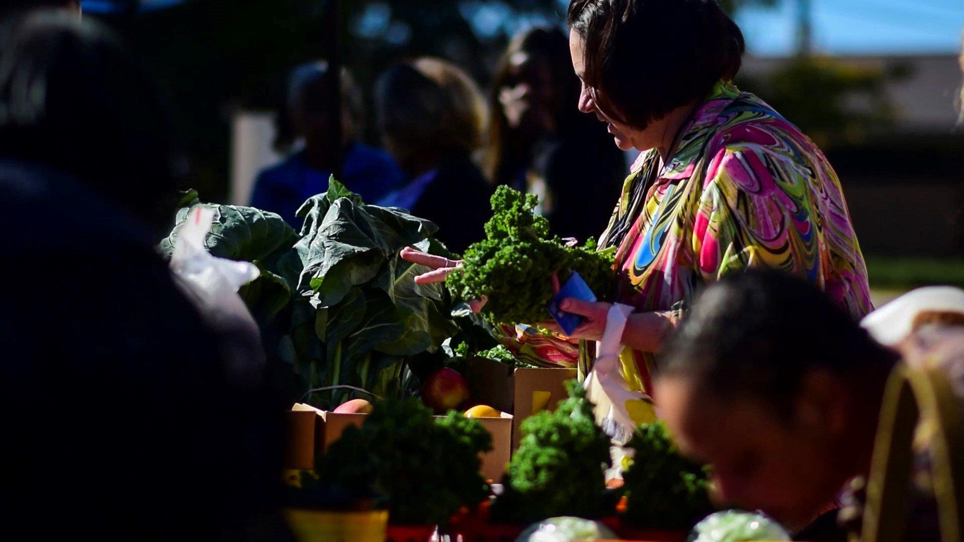 Photo Credit Rogers Vegetable Farm Sumter SC